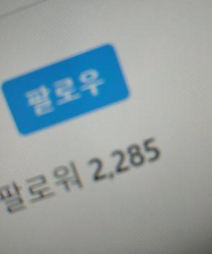 인스타그램 팔로워 늘리기(외국인)