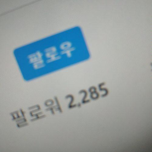 인스타그램 팔로워 늘리기(외국인) photo review